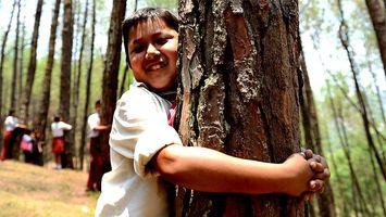 2.000 ni�os en Nepal se unen al 'abrazat�n' de �rboles