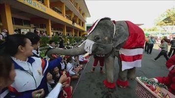 Elefantes Pap� Noel en Tailandia