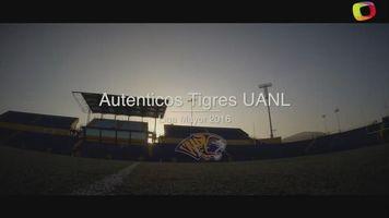 Autenticos Tigres UANL listos para disputar la final del campeonato de Liga Mayor 2016